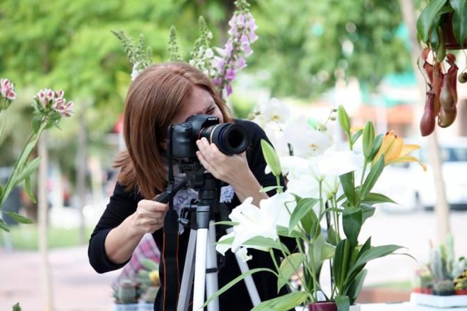 Sesión Fotográfica Primavera 2014